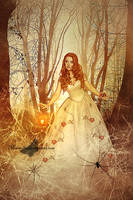 The Forest Of Spiders by maiarcita