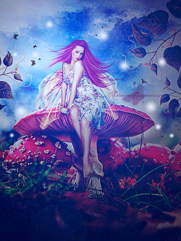 Mushrooms by maiarcita