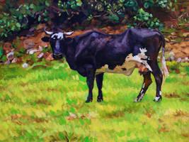 Arahuay cow by rehash435