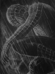 Spider-Man2 by AntonioLiviu