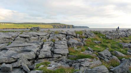 The Burren again by blissflowers