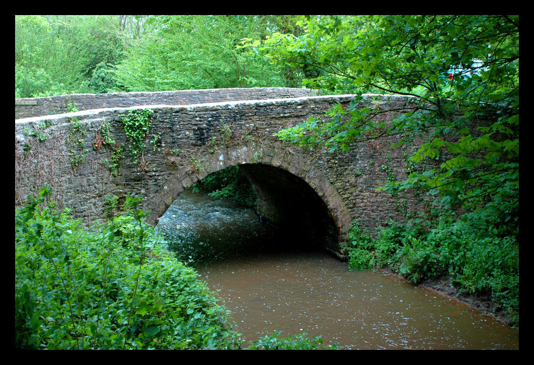 bridge by blissflowers