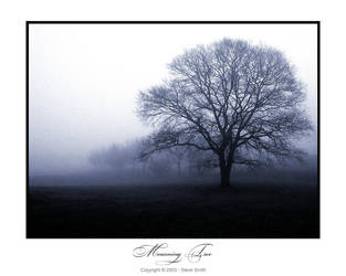Mourning Tree - Print Version by stevesm