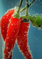 fresh chili. by LenaCramer