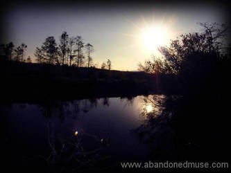 Sunset in Big Cypress 2 by abandonedmuse