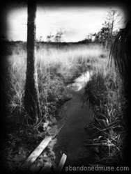 Everglades 2 by abandonedmuse
