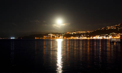 Wellington Harbour Stock 1 by Stockopedia