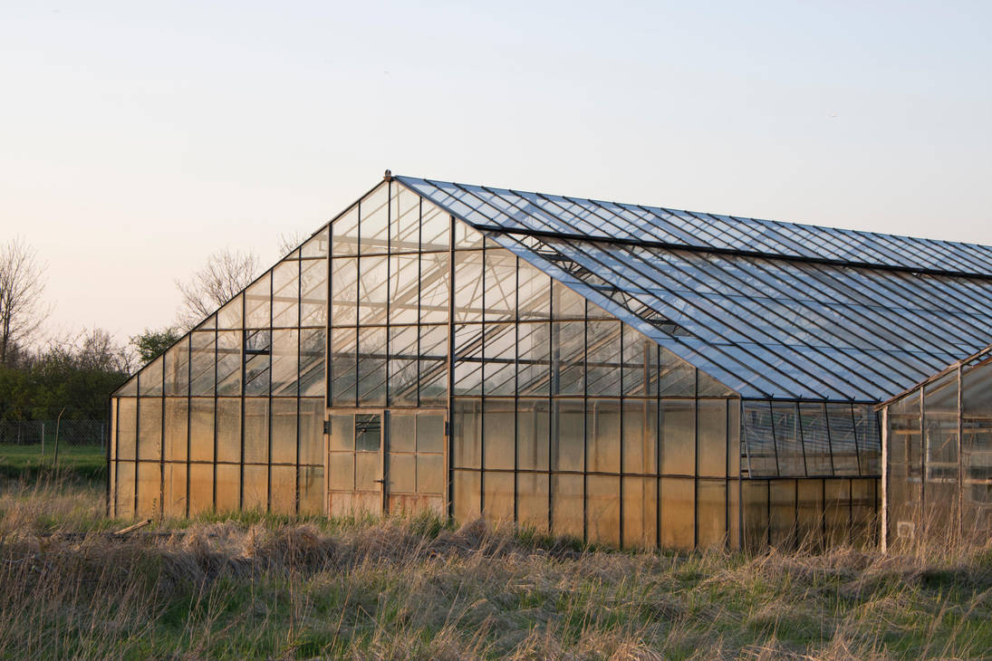 STOCK Glass house by Inilein