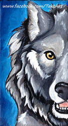 Wolf Fluff - Acrylic Painting - For Sale by TaksArt