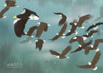 Freedom by Janea1