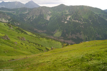 Green Mountains :) by Expectare