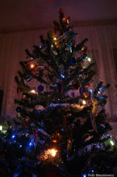 Christmas Tree... Love! by Expectare