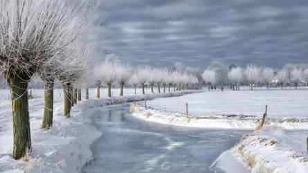 Holland ~winter~ by LarsVanDeGoor