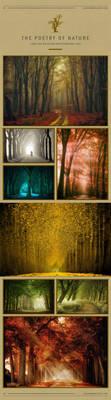 Lars van de Goor Photography Art by LarsVanDeGoor