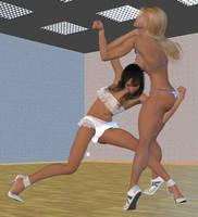Dance studio fight 1 by cattle6