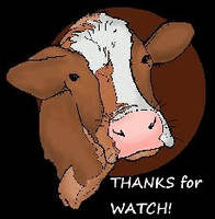 Deluxe-cow-head-clipart-picture-of-a-cow-free-clip by cattle6