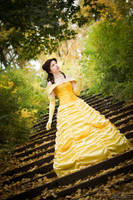 Beauty and the Beast - Belle by theDevil-photography