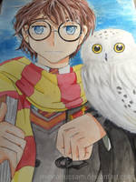 Harry potter by minnahussam