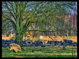 Wheel Nature by kiokiliant