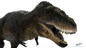 Tarbosaurus bataar by robertfabiani