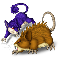 Rattata and evo by AFrozenHeart2