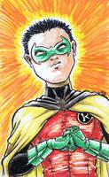 Robin [35a] by JRS-ART