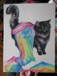 Caped Cosmic Kitty by 6-uNiCoRn-CrOsSiNg-9