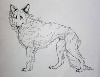 The Darkhund - Darko - WIP by 6-uNiCoRn-CrOsSiNg-9