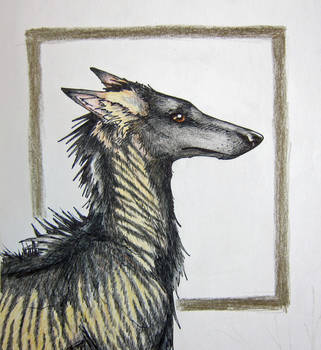 Darach the Wolfhound - Sketch by 6-uNiCoRn-CrOsSiNg-9
