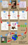 The Process - How To Win A Bid by nicubunu