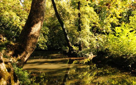 Water silence by nicubunu