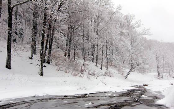 Winter creek by nicubunu