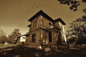 Haunted mansion by nicubunu