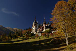 Fairy tale castle by nicubunu