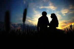 Summer love by nicubunu