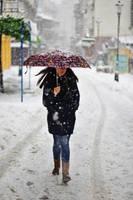Lost umbrella by nicubunu
