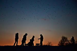 Winter nights by nicubunu