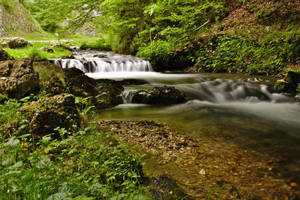 Down the stream by nicubunu
