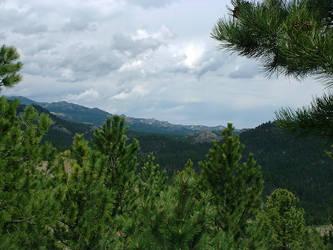 Black Hills by kellylynn
