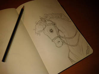 Horse sketch by AnaLuisita95