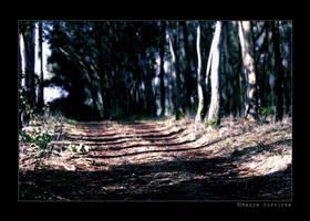 walk t h r o u g h. by xXitsXnadyaXx