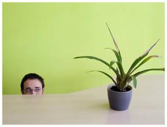Hide-and-seek by galifardeu