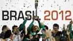 Palmeiras Campeao Copa do Brasil 2012 Wallpaper by Panico747