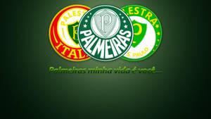Palmeiras minha vida e voce by Panico747