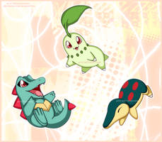 PKMN:GS: Choose Your Starter by Harumi-Chan