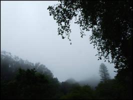 Sintra Fog by Souvenirs