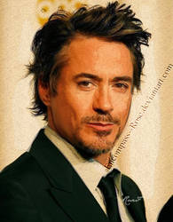 RDJ Experiment by rosebfischer