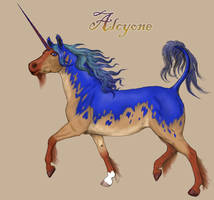 Alcyone - Mare of the Vale by decors