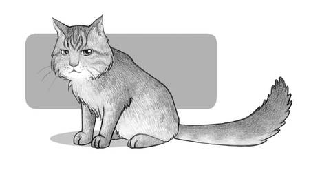 Old kitty by J-Juno