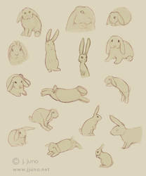 Bunnies Sketches 2 by J-Juno